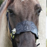 Floral Bronc Halter Noseband - Tooled -RF Horse Tack - Awards/Gifts