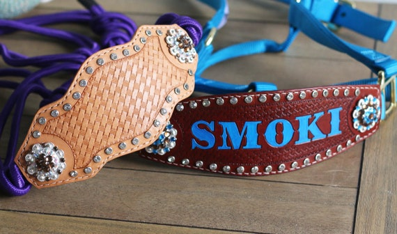 CUSTOMIZED- Made to Order Nylon Web/Buckle Halter - Tooled w/ Bling Crystal Rhinestone Options -Bronc Horse Tack - Awards/Gifts Personalized