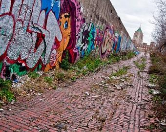 12 x 18 Detroit Street Art Graffiti Photo