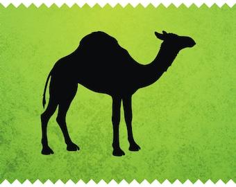 Camel drawing | Etsy