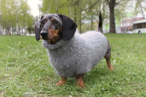 Knitting Pattern Fuzzy Dachshund Sweater Oversized Dog Etsy