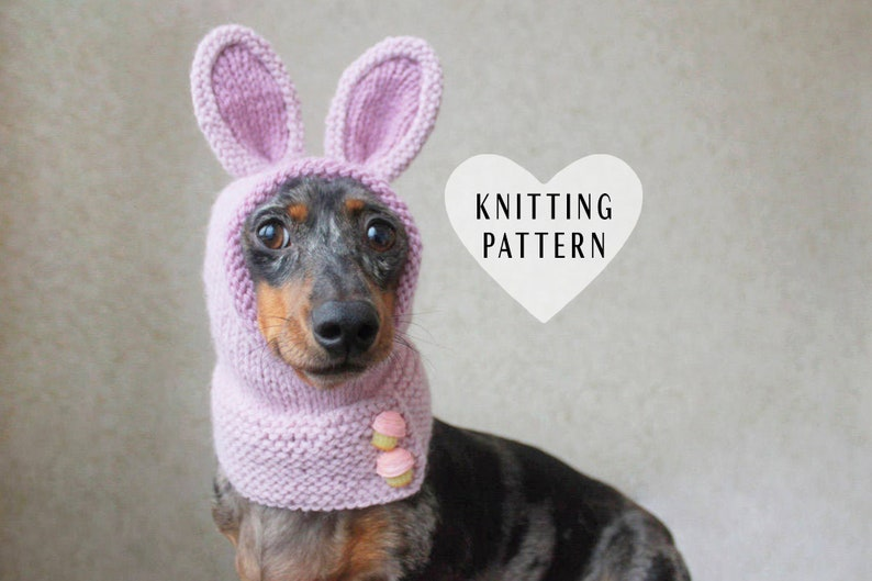 7650b474c84 KNITTING PATTERN Dog Hat Mini Dachshund Bunny Hood Pet