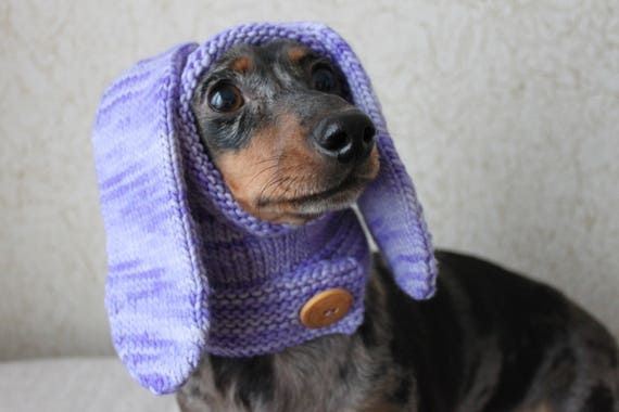 KNITTING PATTERN Dog Hat Rabbit Hood Mini Dachshund Hat Etsy Beauteous Dog Hat Knitting Pattern