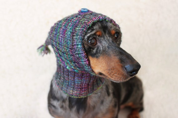 KNITTING PATTERN Small Dog Hat Mini Dachshund Hat Pet Hat Etsy Extraordinary Dog Hat Knitting Pattern