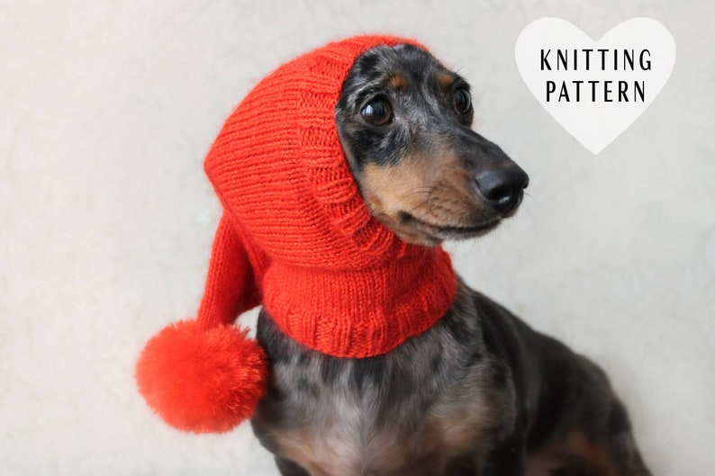 a6aa235eca7 KNITTING PATTERN Dog Hat Dachshund Hat Pet Clothes Pet