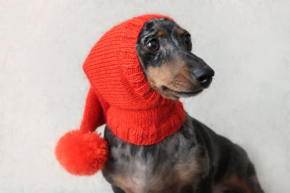 KNITTING PATTERN Dog Hat Dachshund Hat Pet Clothes Pet Etsy Interesting Dog Hat Knitting Pattern