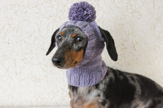 KNITTING PATTERN Mini Dachshund Dog Hat Small Dog Hat Etsy Fascinating Dog Hat Knitting Pattern