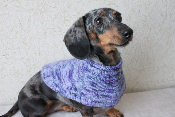 Knitting Pattern Dachshund Capelet Dog Sweater Knitted Dog Cowl
