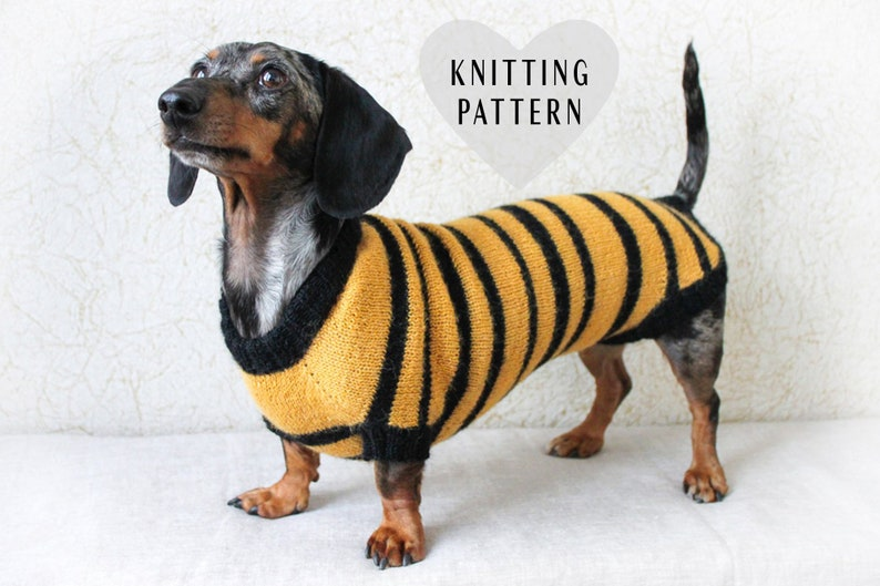 fc02e98a006 KNITTING PATTERN Dog Bee Sweater Dachshund Costume Bee