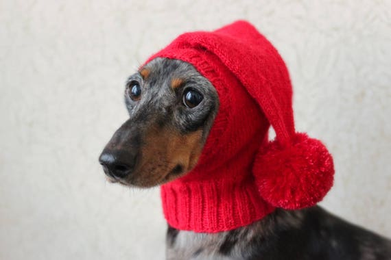 KNITTING PATTERN Small Dog Hat Dachshund Hat Mini Dachshund Etsy Enchanting Dog Hat Knitting Pattern