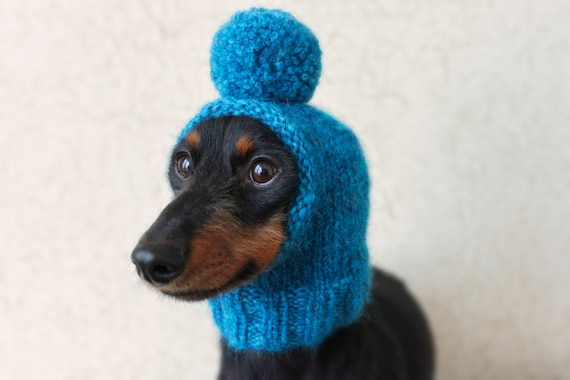 KNITTING PATTERN PomPom Dog Hat Mini Dachshund Dog Hat Etsy Amazing Dog Hat Knitting Pattern