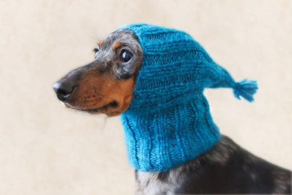 KNITTING PATTERN Small Dog Hat Dachshund Hat Mini Dachshund Etsy Inspiration Dog Hat Knitting Pattern