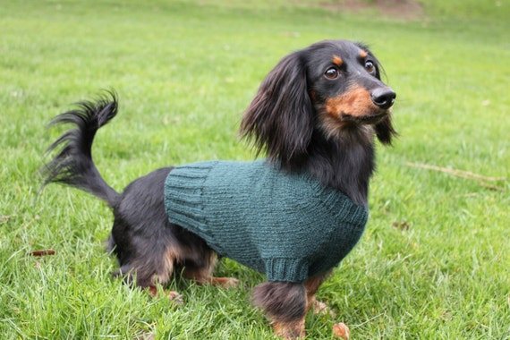 Knitting Pattern Mini Dachshund Dog Sweater Cloud 9 Pet Etsy