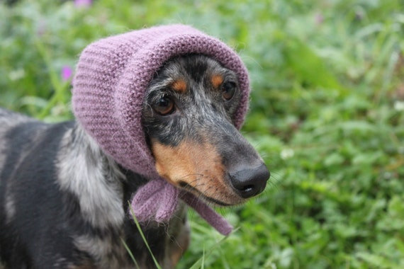 Knitting Pattern Mini Dachshund Dog Hat Dog Dachshund Knit