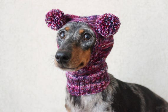 Knitting Pattern Small Dog Hat Dachshund Hat Mini Dachshund Hat