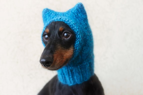 KNITTING PATTERN Small Dog Hat Pussycat Hat Kitty Cat Hat Etsy Amazing Dog Hat Knitting Pattern
