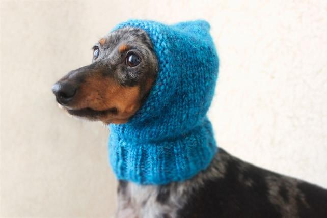 Knitting Pattern Small Dog Hat Mini Dachshund Hat Pet Etsy