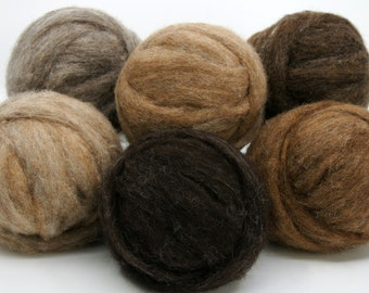 Woodland Creatures Carded Corriedale Collection, Six Colors, Six Ounces for Needle Felting