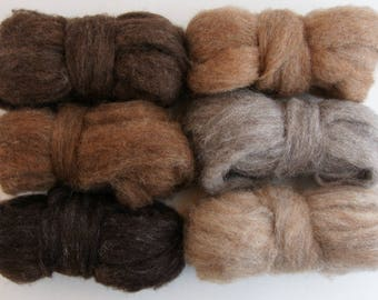 Woodland Creatures Carded Corriedale 6 Colors 6 Ounces for Needle Felting