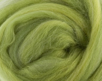 Two OuncesExtra Fine Merino Wool Roving Sugar Candy, Color Parrot