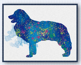 Border Collie Watercolor Poster 2