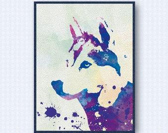 Siberian Husky Watercolor Poster 2