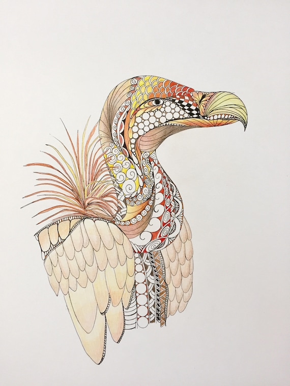 Zentangle Vautour Art De Vautour Zentangle L Art Oiseau Zentangle De Couleur D Encre Crayons De Couleur Art Mural Décoration Murale