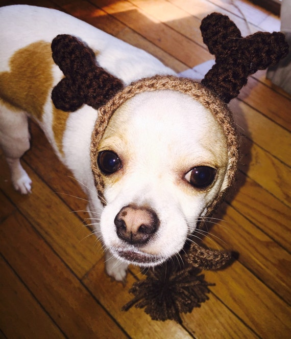 Hond Haken Rendieren Hoed Haak Honden Kleding Chihuahua Etsy