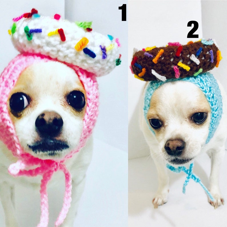 Dog Costume Donut Birthday Hat Party