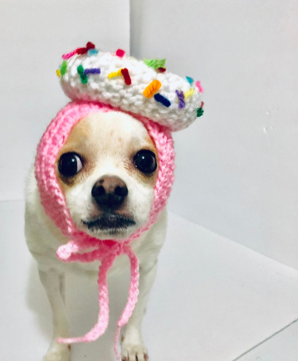 Donut Dog Birthday Hat Party Costume Small