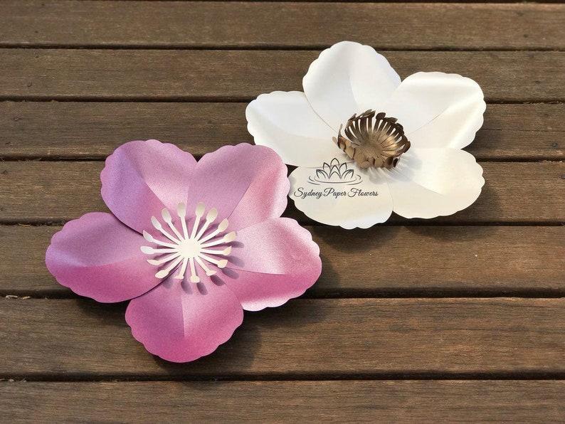 BUTTERCUP Paper Flower Template & Tutorial manual/svg pdf image 0