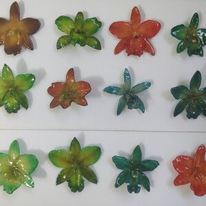 hair clips resin preserved Cattleya orchid pendants pins variety of colors