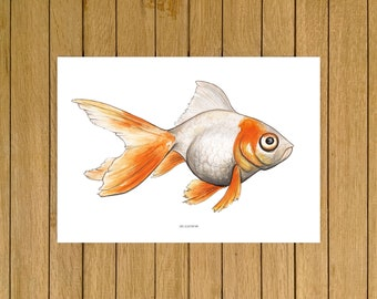 "Ryukin Goldfish, Fish Tank, Aquarium, Art, Giclée Print, Watercolor Illustration, Home Decor, Nursery Decor, A5, 8.5""x11"", A4, A3, 13""x19"