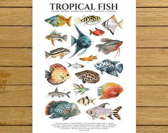 Tropical Fish Print, Fish Poster, Giclée Print, Nursery Decor, Tropical Home Decor, Fish Tank Poster, Kids Room Wall Art, Colourful Fish Art