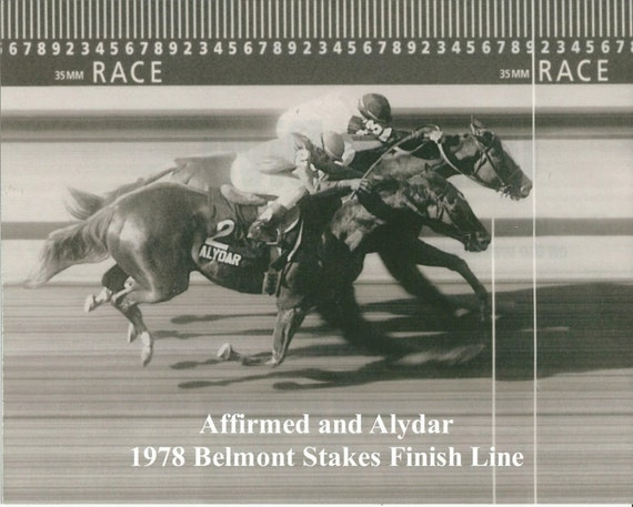 AFFIRMED & ALYDAR 1978 Belmont Stakes Finish Line Camera | Etsy