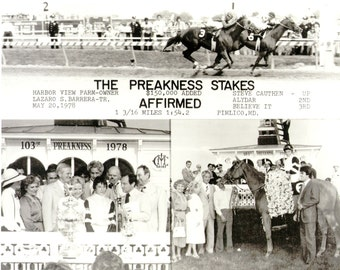 Affirmed - 1978 Preakness Stakes 3 Photo Composite