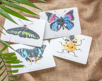 Beauty of nature - 4 postcards -  Butterflies and a  tinkbug