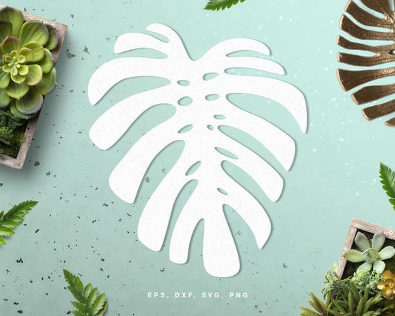 Tropical Leaf Digital Cut File Svg Dxf Png For Silhouette Etsy