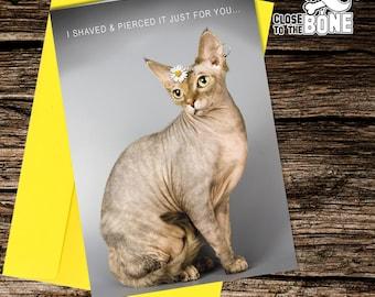 Rude cat card | Etsy