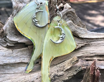 Real Luna Moth Wing Earrings With Moon Charm