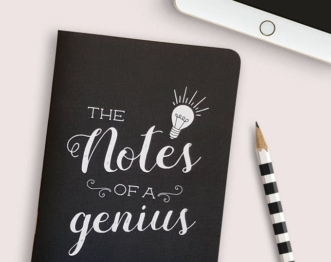 Notes of a genius 28 page notebook