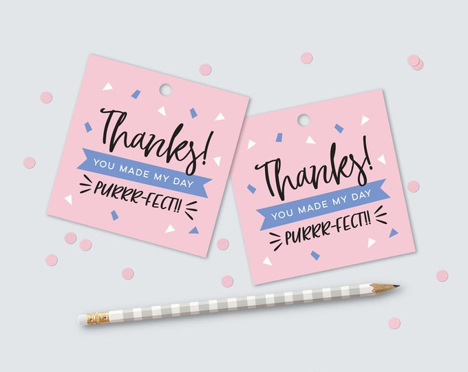 Kitty Cat kids party favor tags to match invitation // pink and blue kitty cat party swing tags 3x3 inches party printable DIY thank you tag