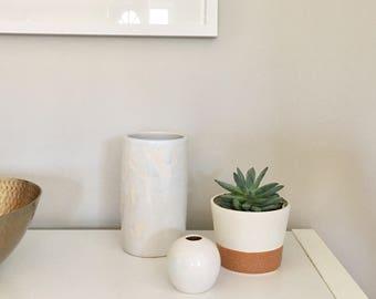 Succulent Planter, Succulent Planter Pot, Ceramic Succulent Pot, Modern Planter, Succulent Planter, Succulent Care, Indoor Planter