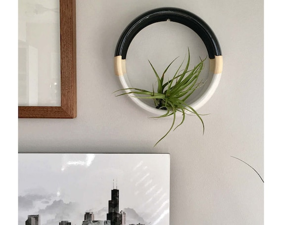 wall hanging air plant holder large wall hanging planter etsy. Black Bedroom Furniture Sets. Home Design Ideas