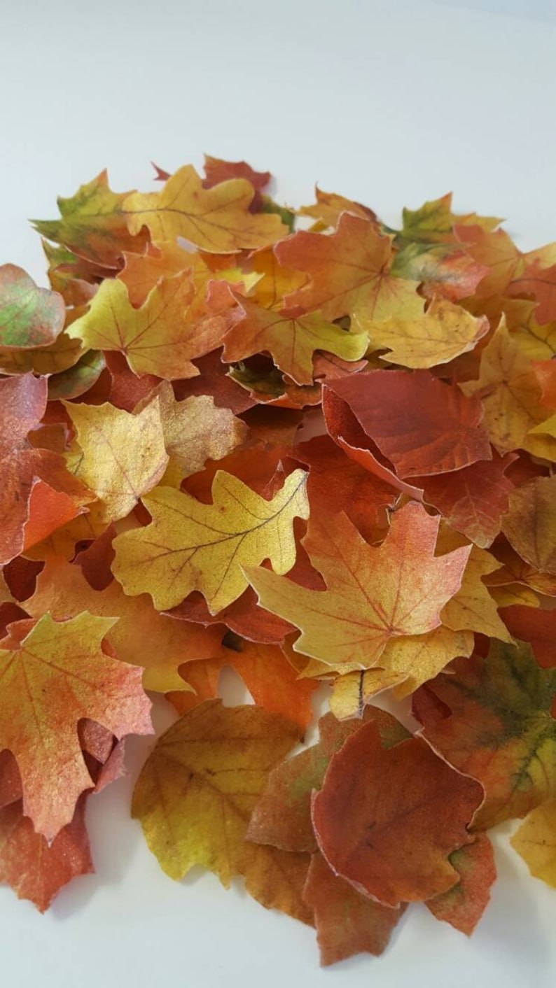 16 Edible Fall Leaves Wafer Paper Toppers for Cakes image 0