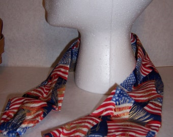 Patriotic flags and fireworks, printed sethoscope cover