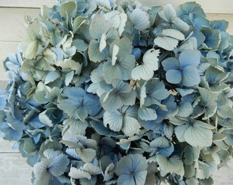 Green and Cream Soft Color Floral Farmhouse Bouquet Dried Hydrangea Flowers 8 Stems Very Light Blue Wedding Rustic Cottage Decor Craft