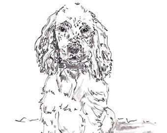 Custom pet portrait - original A5 ink and pencil drawing of dog or cat, personalised to each pet. Hand drawn pet illustration.
