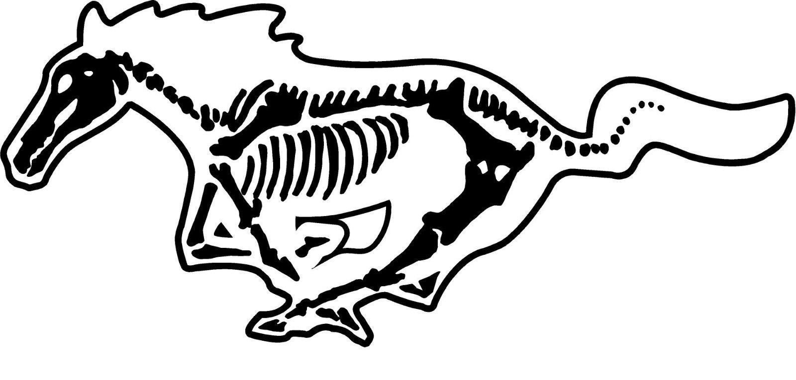 ford mustang skeleton decal fox body 5 shelby cobra sticker etsy 05 -09 Mustang 50
