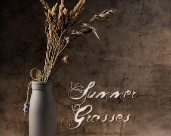 Summer Grasses - Rustic fine art photographic print